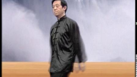 陈正雷|讲解陈氏太极拳养生功之静养功:太极浑圆桩