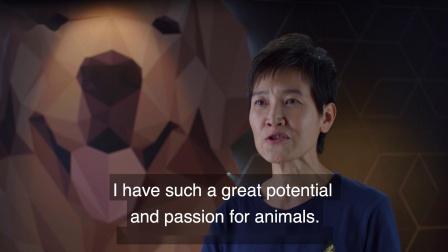 西丽 选手先导片《狗语者西萨:亚洲人》训犬真人秀