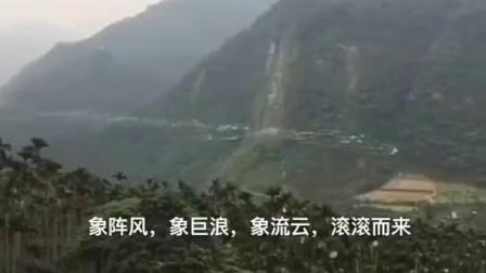 秦岭候鸟迁徙,演绎着生命的精彩,大自然的美丽神奇
