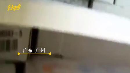近千吨!广州警方查获大批走私冻品,案值5600多万
