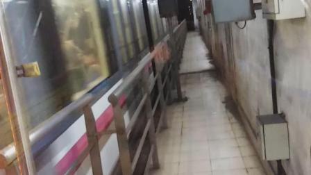 上海地铁6号线进东明路站