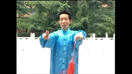 张勇涛杨式太极剑十三式