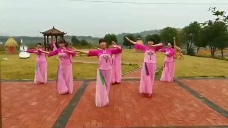 湖南永州友爱广场《南飞雁》团队版指导爱丽