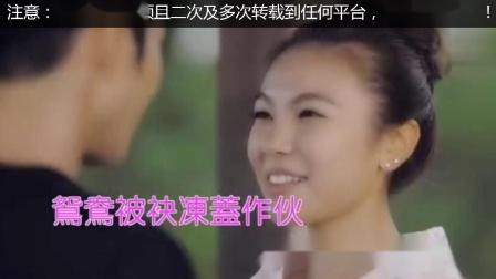 陈雷歌曲ktv字幕版本合集3