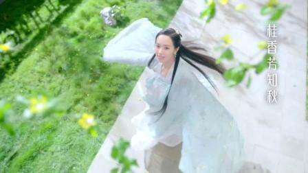 2010年元旦金芒果粉丝节苏醒江映蓉-综艺-高清完整正版视频在线观看-优酷(1)