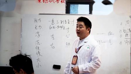 针灸推拿望闻问切之切诊——脉象01——中保职业培训学校