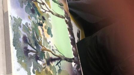 王老师讲水彩风景~大树
