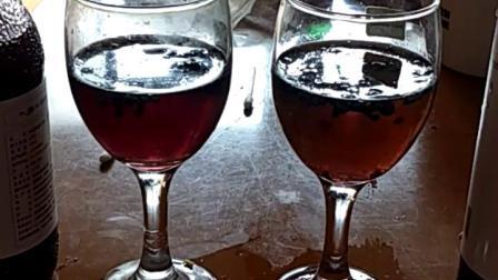 蓝莓果汁强抗氧化性实验