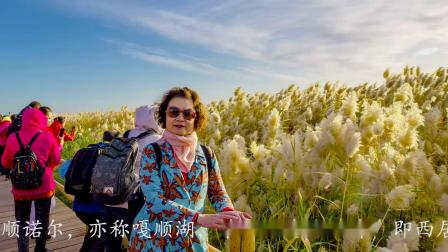 内蒙古阿拉善盟额济纳旗 (蓝色的居延海)旅游摄影