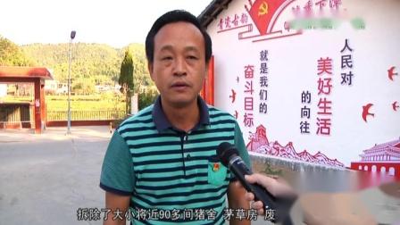 回访光德镇下漳村:村貌大变样 微改造赢口碑