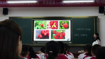 A531 《从百草园到三味书屋》教学实录 徐丹
