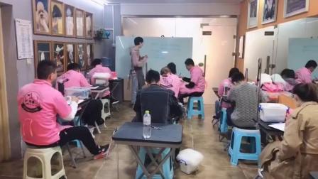 宠物美容师培训,雪纳瑞的基础知识讲解零基础免费赠送宠物鲜食烘焙课,包会