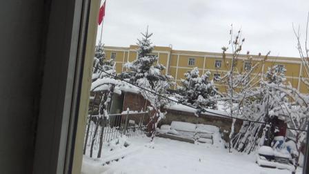 C0034霜降一场雪、千树万树''梨花开''