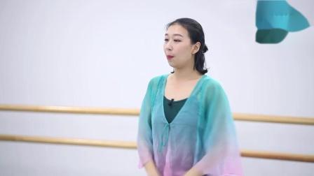 古典舞教学讲解分解动作全套教材凉凉之7-1