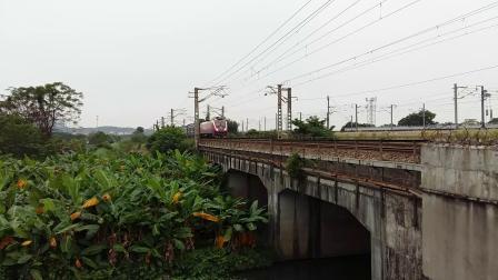 广铁广段的HXD1D型电力机车牵引T152次列车从广州北站附近通过