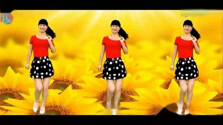 尕撒拉--燕子广场舞舞曲字幕