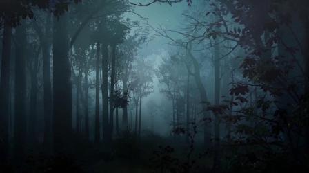 职场丛林节目背景