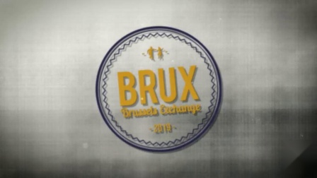BRUX Brussels Exch - The City Hoppers