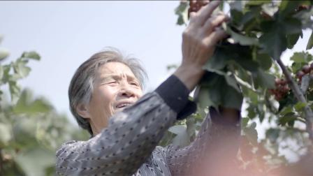 运城市绛县县委统战部推出主题宣传片