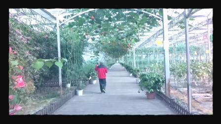 参观游览瑞金九丰生态农业公司《都市田园》