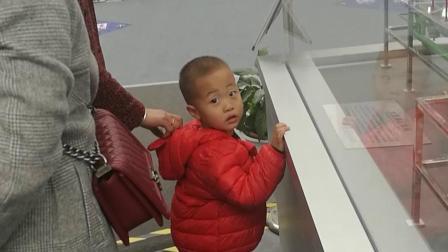 杨凌农高会20191025