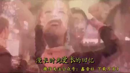 张家成 - 相思桃花雨 - DJ版