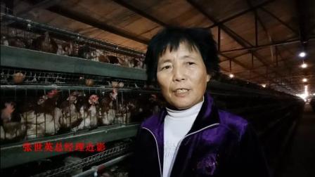 铜山区助农养鸡专业合作社张世英总经理专访  摄影:淮海经济融媒体
