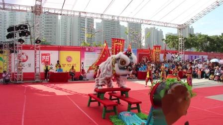 2019年清远市第一届狮王争霸赛  传统狮2 广东岭南职业技术学院 MVI_6258