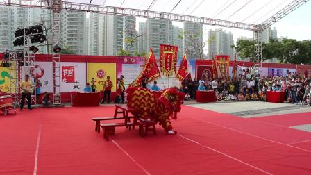 2019年清远市第一届狮王争霸赛  传统狮1 清城区龙形拳会   MVI_6257