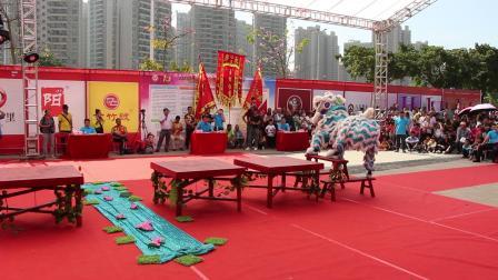 2019年清远市第一届狮王争霸赛  传统狮5 清远市武术龙狮团  MVI_6265