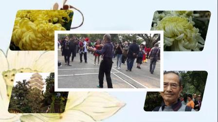 鹅领公园赏菊打花棍