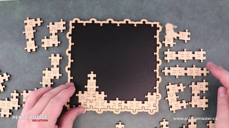 Pento Puzzle from Jean Claude Constantin - Solution
