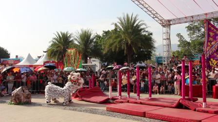 2019年清远市第一届狮王争霸赛  高桩狮3 香港发强体育总会佛冈分会  MVI_6281