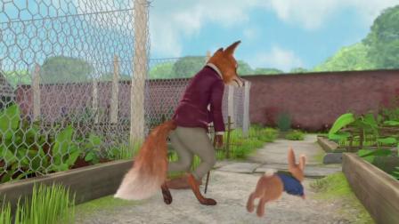 动画片,彼得·兔子被困在花园里充满动作的冒险