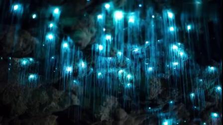 新西兰怀托莫的萤火虫洞,美到窒息 via@YouTube精彩视频