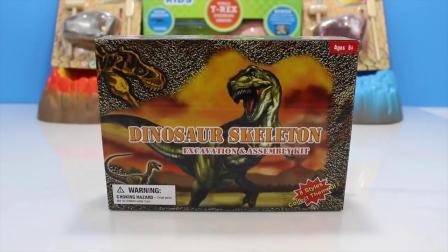 动画片,恐龙玩具挖挖SKELETONS化石恐龙玩具挖通过