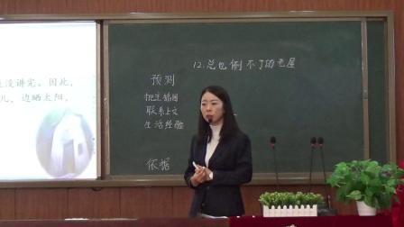 木兰县大贵中心校李伟红部编语文三年级上册《总也倒不了的老屋》