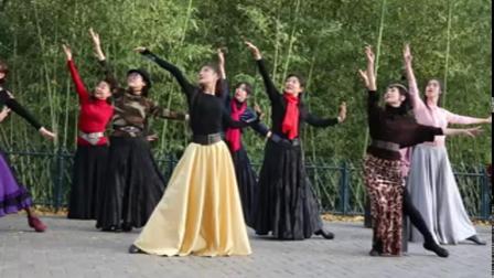 紫竹院广场舞《迷途的羔羊》鲁吉义摄 2019.11.10
