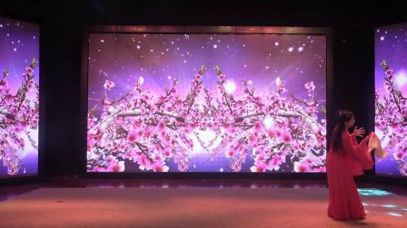 2019-独舞《红颜劫》表演:李雪灵 摄制:杜希亮