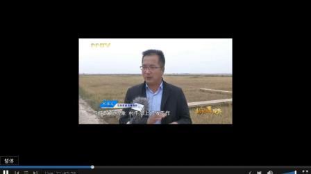 内蒙古卫视在线直播「高清」5