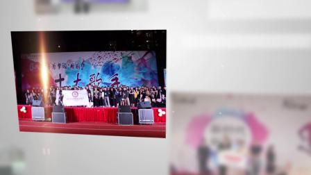 学校 广州华商职业学院 第九届科技文化艺术节