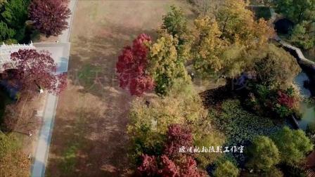 秋天的南京明孝陵