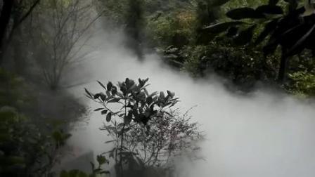 雾喷降温系统.锦胜雾森(中国人造雾十大品牌).快速降温专利技术产品