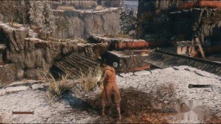 只狼一周目全精英击杀一命通关流程(1)