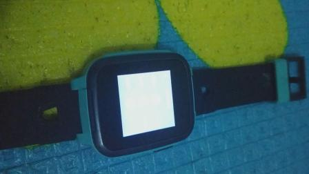 我的手表    SE   5