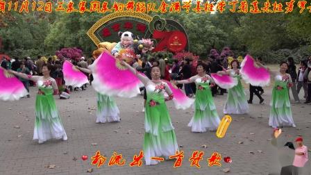 """[蓝光] 2019年11月12日三泉家园""""泉韵舞蹈队""""一行八人游览第十三届上海共青森林公园全国菊花展录像 08《我和我的祖国》"""