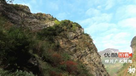 初冬四川广元鱼河麻柳峡谷 悬崖上的景色 矮桩树红叶