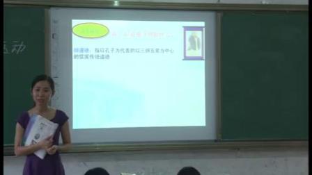 2019-2020学年第一学期高二年级历史科《新文化运动》阳春五中彭丽萍