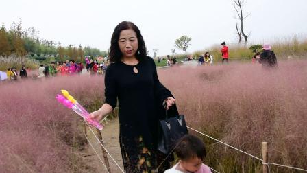2019.11.3汉中湿地公园开心游园.(一)