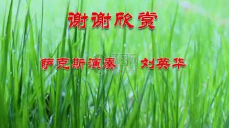 刘英华音乐作品(三十八)